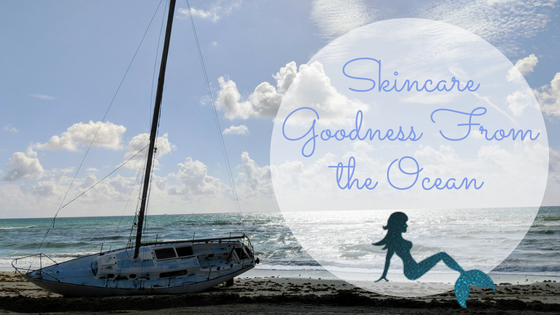 Skincare Goodness from the Ocean Blog Title