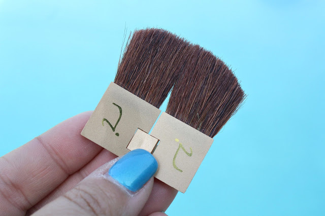 Jane Iredale Pure & Simple Makeup Kit face brush