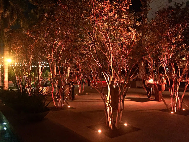 A Magical Evening At Sacred Space Miami guava trees
