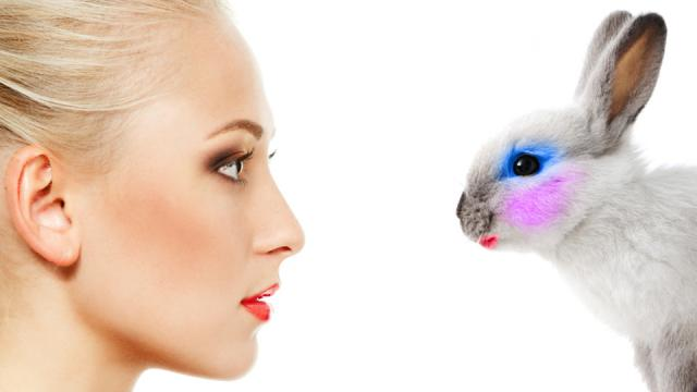 Women and bunny both with makeup on
