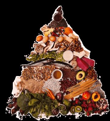 True Food Kitchen Dr. Andrew Weil's Anti-Inflammatory Food Pyramid